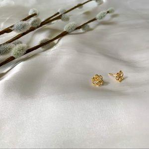 ✨ Gold Butterfly Earrings
